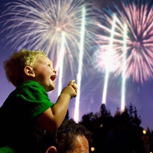 Disneyland California Theme Park Fireworks Vacation Magic Kingdom