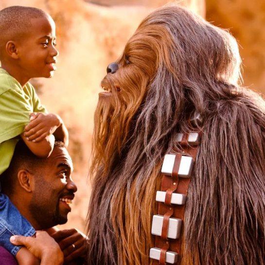 Disney Hollywood Studios Chewbacca Character Meet