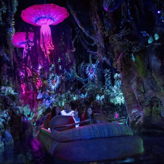 Disney Animal Kingdom Avatar Pandora Navi River Journey Ride