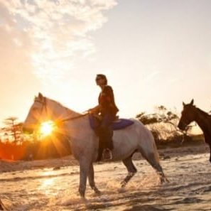 Antigua Horseback Riding