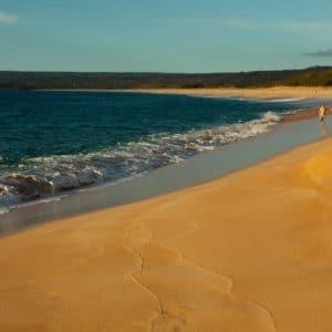 Hawaii Beach Ocean Vacation