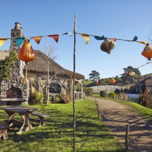 Hobbiton Matamata Waikato Lord of the Rings The Hobbit Vacation the shire flag party
