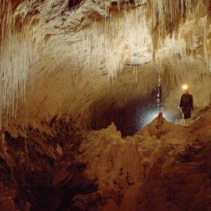 Luckie Strike Cave Waikato Absolute Adventure