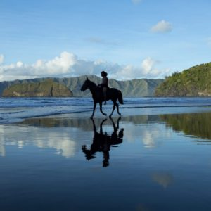 Tahiti HIVA Horseback on Beach
