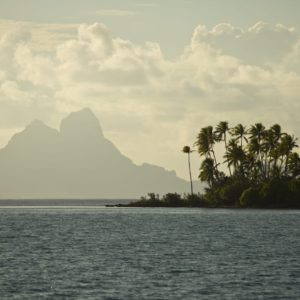 Tahiti tahaa afternoon sun palm tree island mountains ocean view
