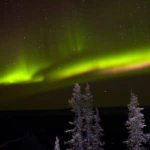 Alaska Luxury Vacation Fairbanks Northern Lights Green Pine Tress Snow