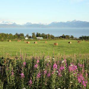 Alaska Luxury Vacation Homer