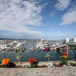 Alaska Luxury Vacation Homer Boats Pier Slip