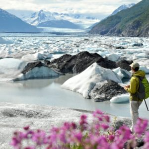Alaska Luxury Vacation Matsu Valley Spring Ice Mountians Flowers