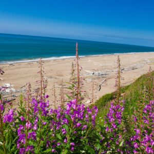 Alaska Luxury Vacation Nome Beach Spring Summer