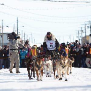 Alaska Luxury Vacation Nome Dogsled Race Championship Finish Line