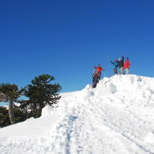 Araucania Cordillera