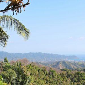 Costa Rica Tropical Jungle Nature Outdoors Travel