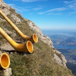 Europe Luxury Switzerland Vacation Alphorn Musical Instrument Horn Wood Instrument