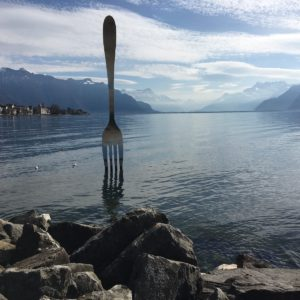 Europe Luxury Switzerland Vacation Fork Lake Vevey Switzerland Mountains Art