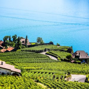 Europe Luxury Switzerland Vacation Swiss Montreux Vineyard