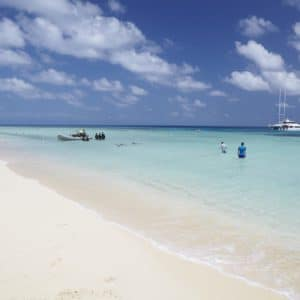 Michaelmas Cay Great Barrier Reef Qld Luxury Australia Vacation