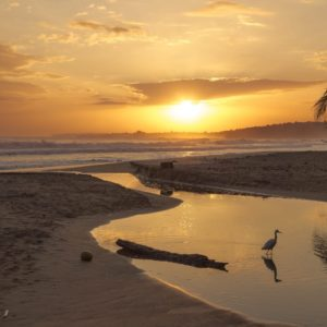 Sea Ocean Beach Waves Costa Rica Nature Sun