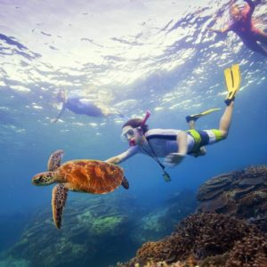 Snorkelling Great Barrier Reef Qld Luxury Australia Vacation