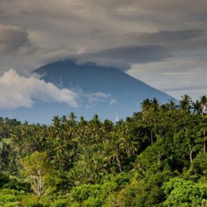 Volcano Costa Rica Palm Trees Jungle Tropical